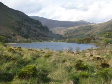 Looking north across Llyn Gwynant to the campsite May 2009